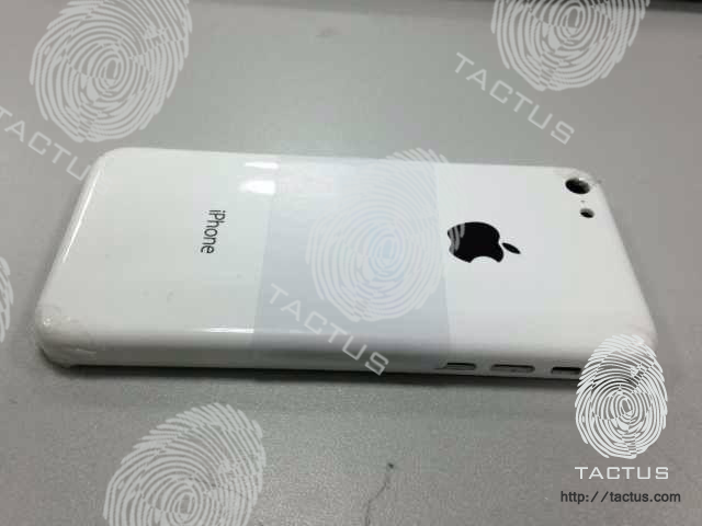 budget-iPhone-back-white-leak